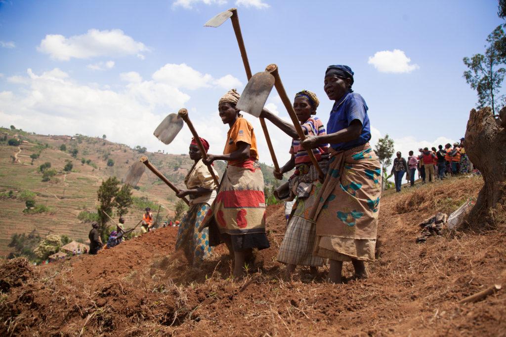 mulheres rurais.jpg