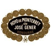 hoyo+logo.jpg