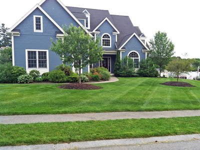 Lawn-Services-Massachusetts.jpg