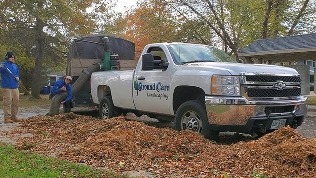 Doing our part to keep leaves off your lawn 🍁🍂