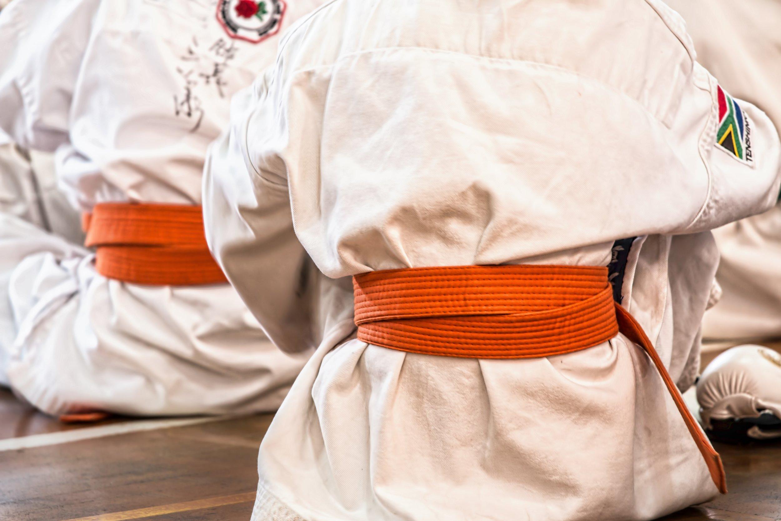Kidjutsu - Kamppailulajien alkeita lapsille.Tunneilla tutustutaan oman kehon hallintaan, kamppailulajien tekniikkaan ja liikkeiden turvalliseen suorittamiseen.