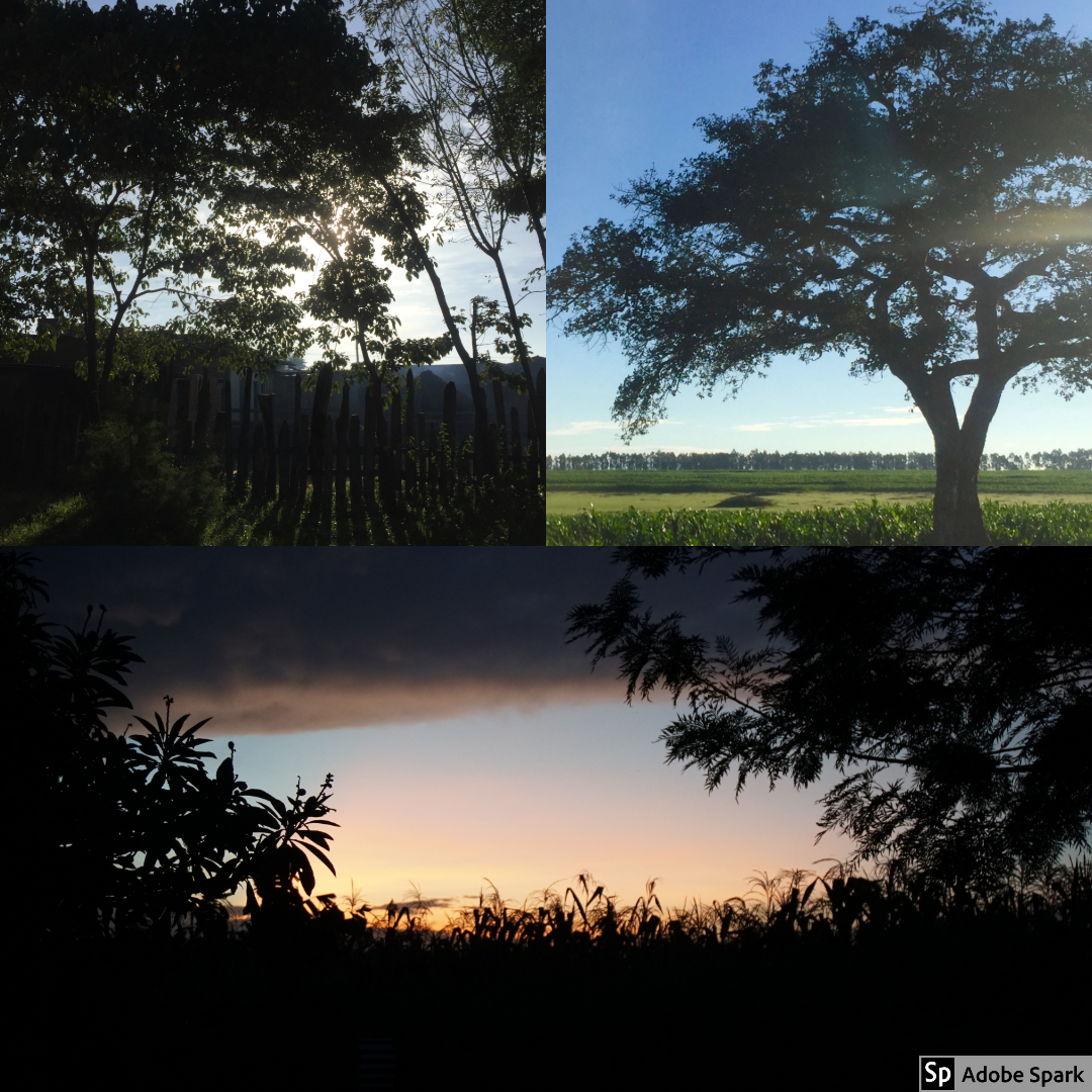 We woke up early in Eldoret to be at HIP Africa for morning announcements. These were some of the sights that we saw during that drive. We had beautiful sunrises and blue skies over green fields.