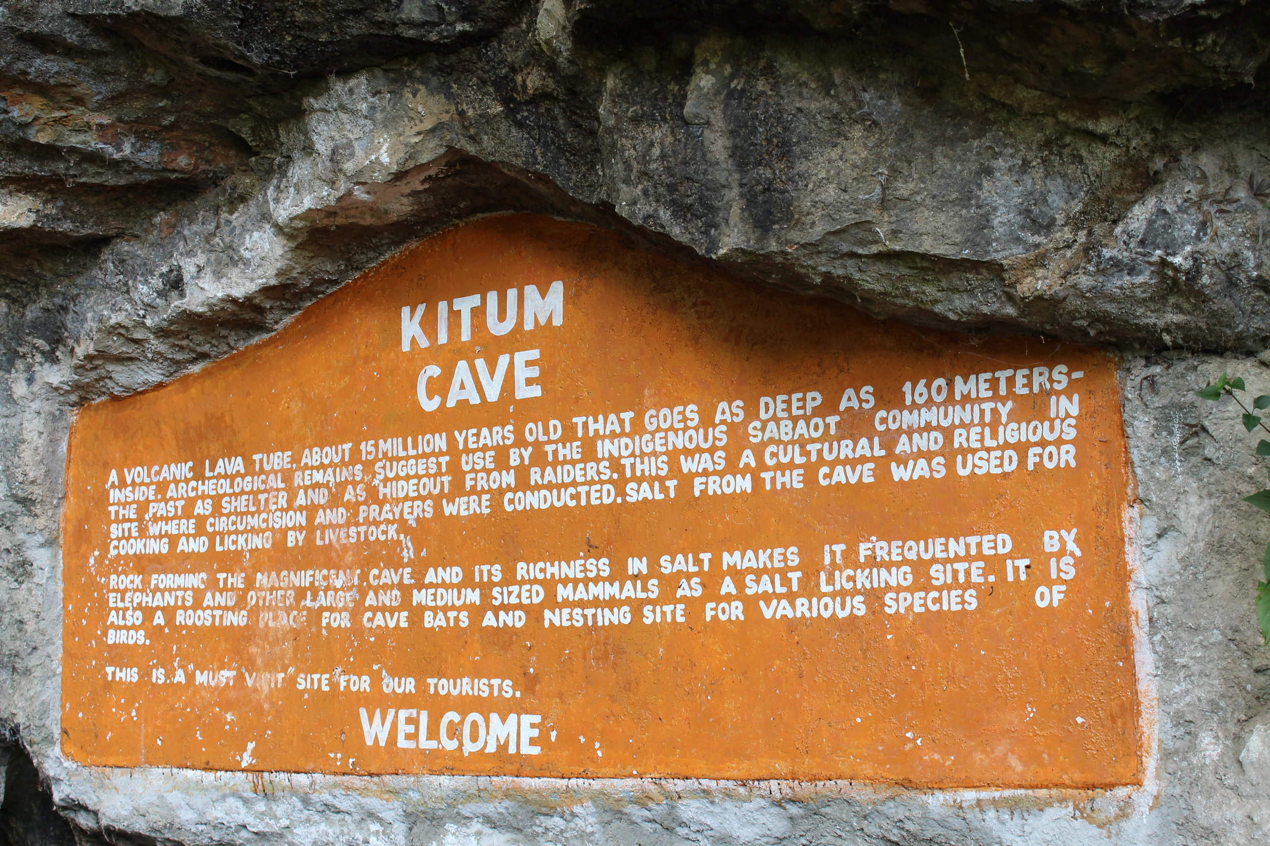 "Kitum Cave: ""A volcanic lava tube about 15 million years old that goes as deep as 160 Meters inside. Archaeological remains suggest use by the indigenous Sabot community in the past as shelter and as hideout from raiders. This was a cultural and religious site where circumcision and prayer were conducted. Salt from the Gave was used for cooking and licking by livestock. Rock forming the magnificent cave and its richness in salt makes it frequented by elephants and other large and medium sized mammals as a salt licking site. It is also a roosting place for cave bats and nesting site for various species of birds. This is a must visit site for our tourists. Welcome"""