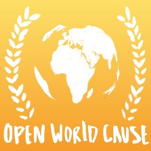 Do you excel at Social Media? Are you wanting to earn volunteer hours for a non-profit organization and get experience working and communicating with educational professionals all over the world? The Open World Cause is looking for YOU! If you or someone you know might be interested, we would love to find someone who could spend a couple of hours a month helping share our social media responsibility with myself and another volunteer of our organization. Reach out today to find out how you can get involved and make a difference!