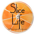 Copy of slice.jpg