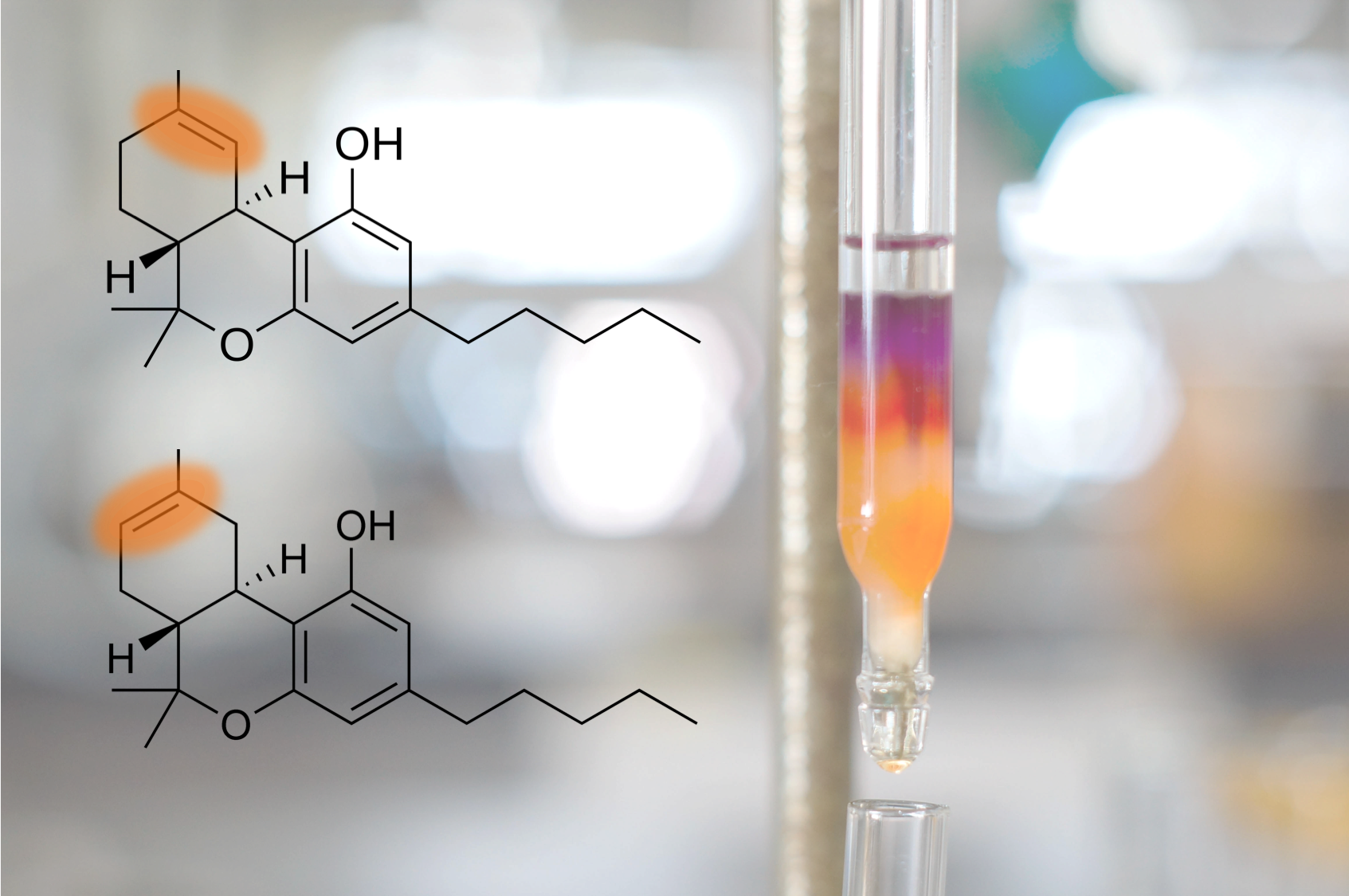 separation - Many cannabinoids are similar in chemical structure. A single alteration of the chemical structure will affect major functional changes. The two molecules of interest are Δ9-THC and Δ8-THC—one will act as an intoxicant and the other is non-psychoactive. Buzzkill Labs technology separates the compounds before analysis preventing false positives.