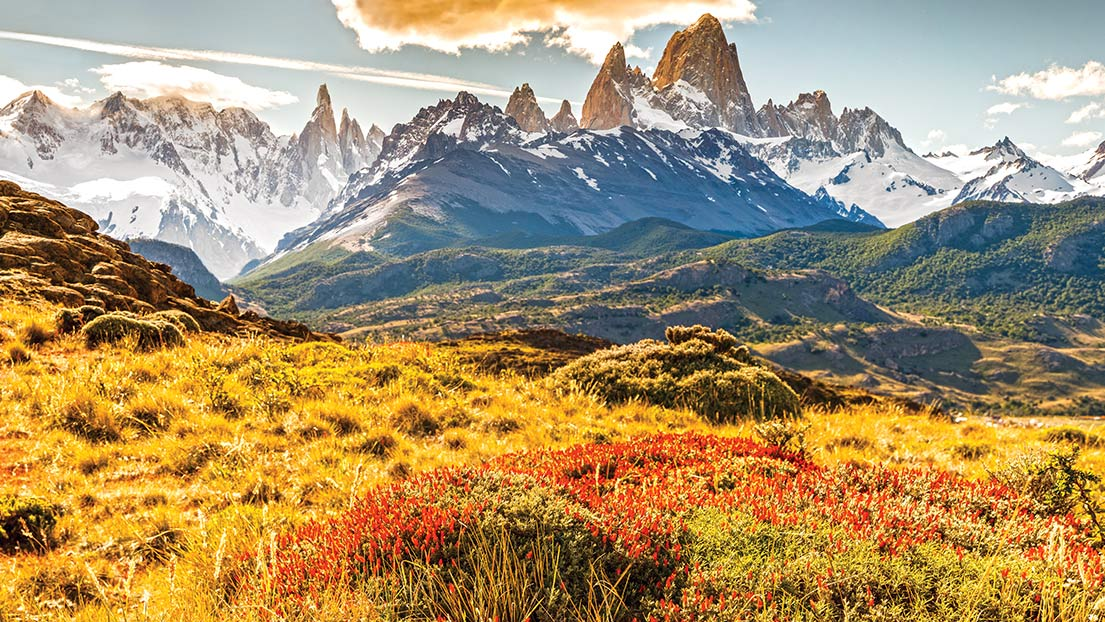 Patagonia - I've loved Patagonia since I went to New Hampshire for boarding school and their jackets protected me from the freezing winters. I still love them for me and my whole family, especially because of their environmental impact.