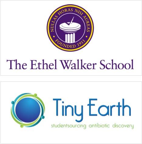 walker  tiny earth.jpg