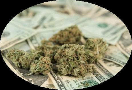 marijuana business banking.png