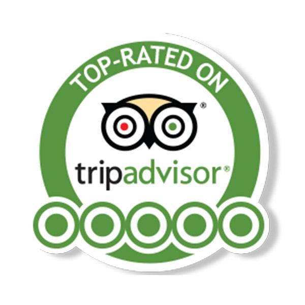 Summertime-barharbor-Tripadvisor-five-star-Reviews.jpg