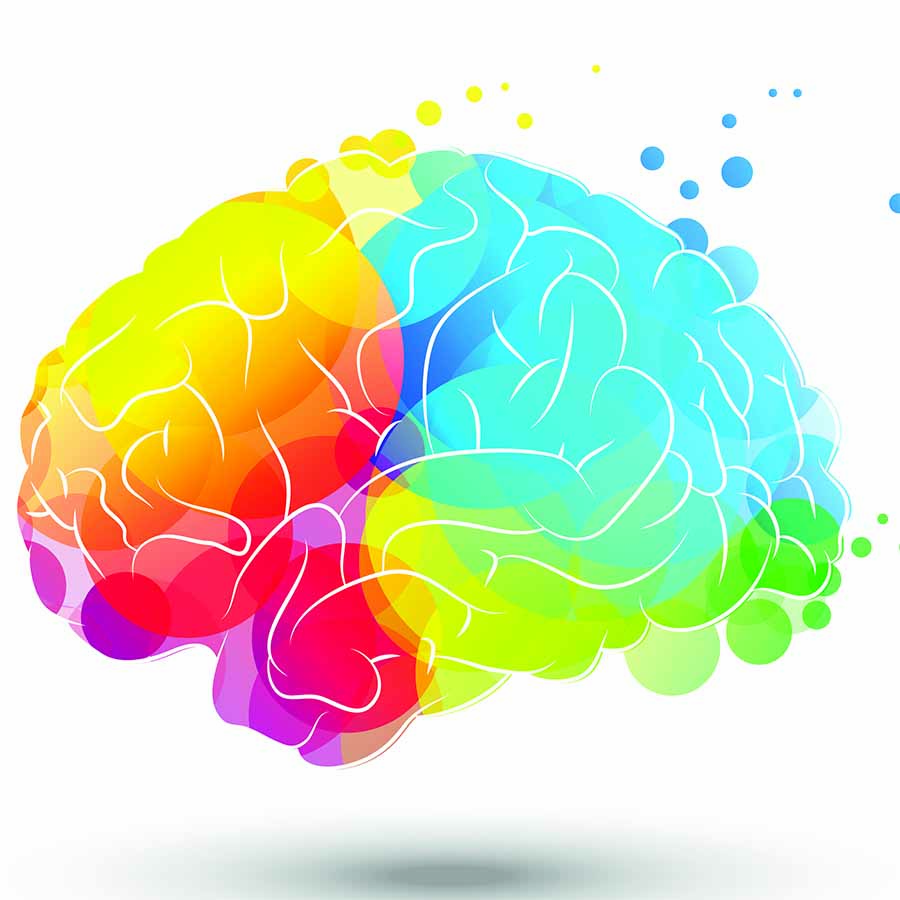 Creativity and the Brain - Seattle