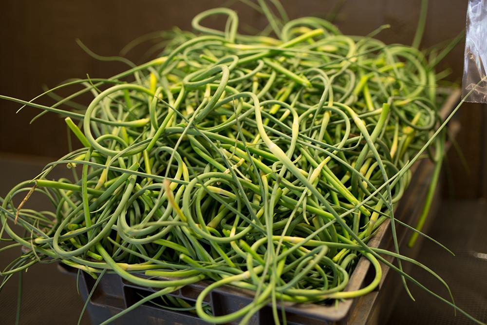 garlic scapes.jpg