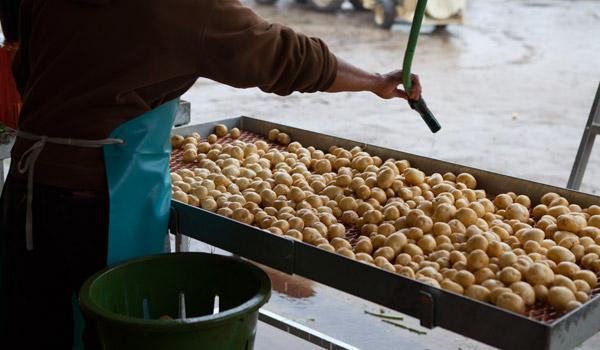 Potato-Wash-Outside_1403732244.jpg