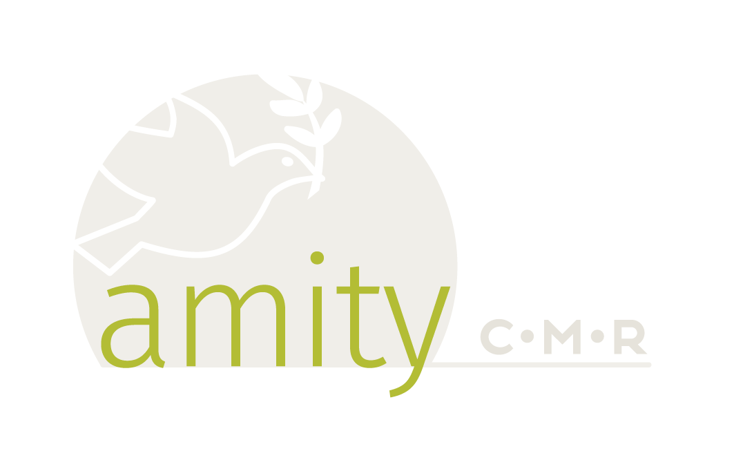 Amity CMR – Conflict Management and Resolution