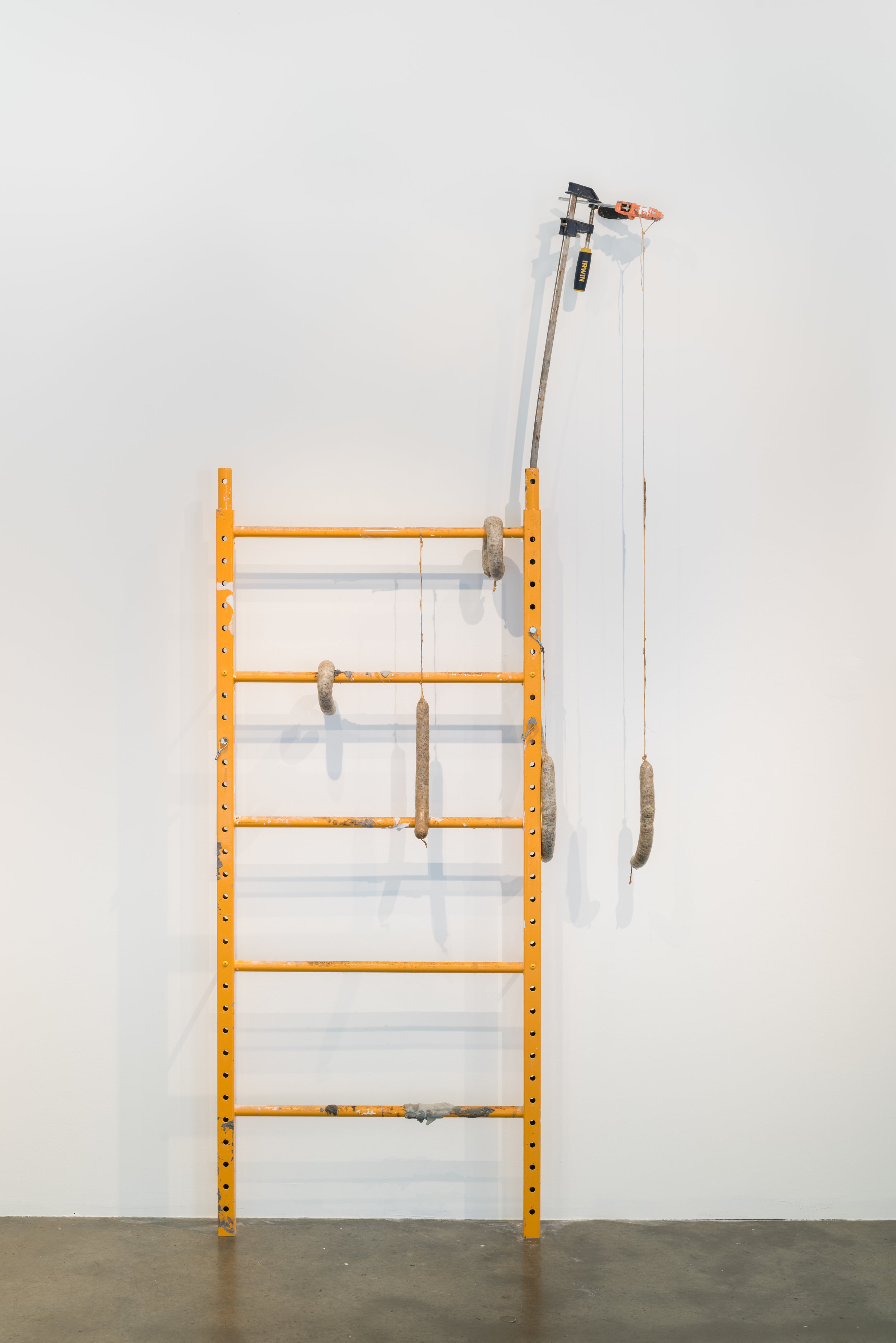 Hanging Around (Healing Sausages for Communal Gatherings) , 2017  Steel, clamps, sausage casing, fennel, lard  92 x 44 x 6 in.