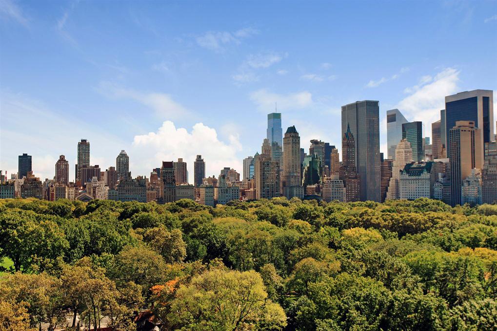 13 - Central Park.jpg