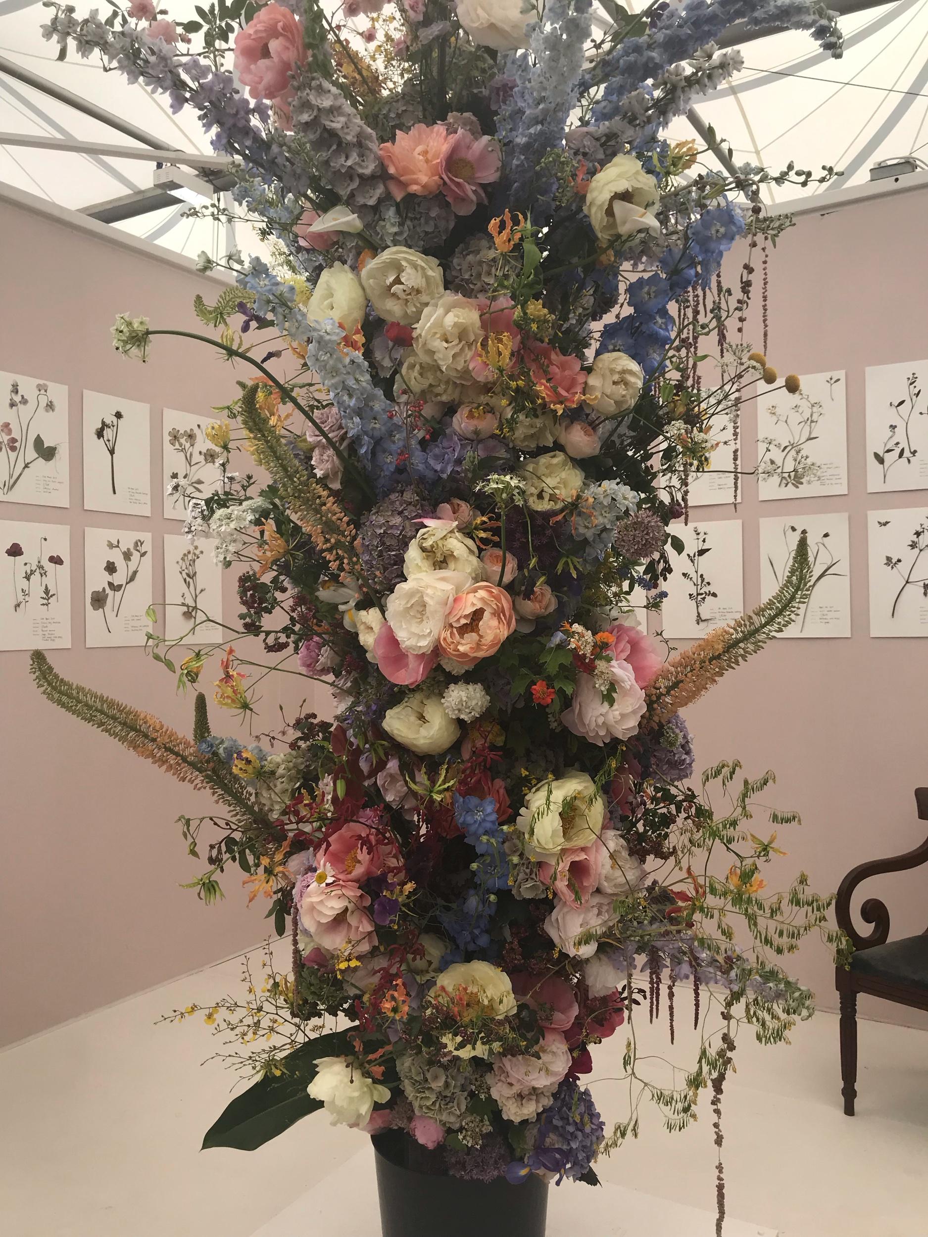 Living Herbarium by Gail Smith