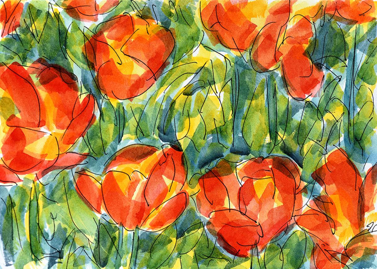 brucemcmillan_01_tulipsymphony.jpg