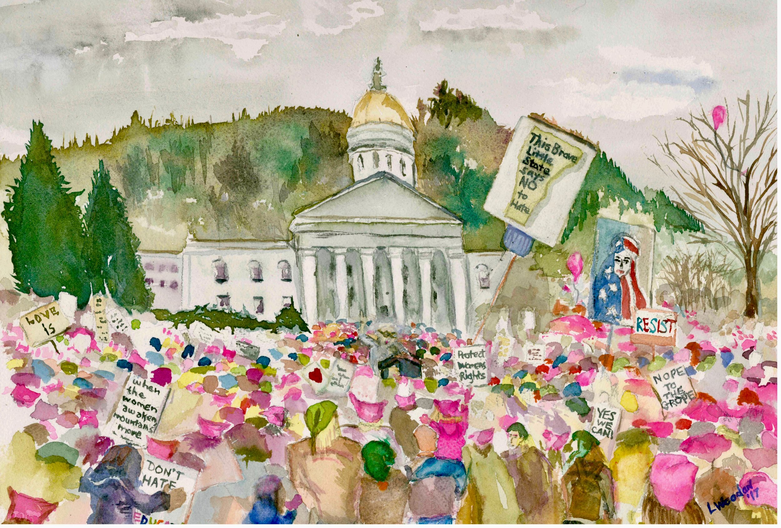 """""""Vermont Womens March"""" - 2017"""