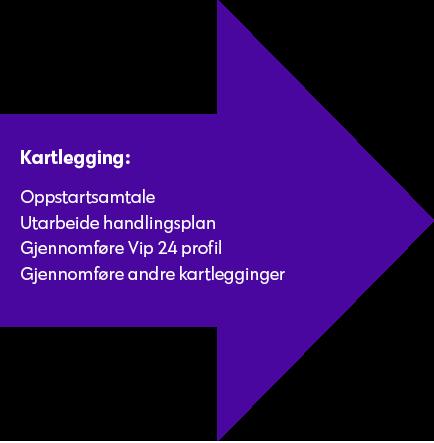 kartlegging.png