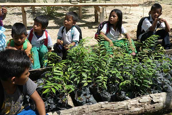 Forest-conservation-teaching