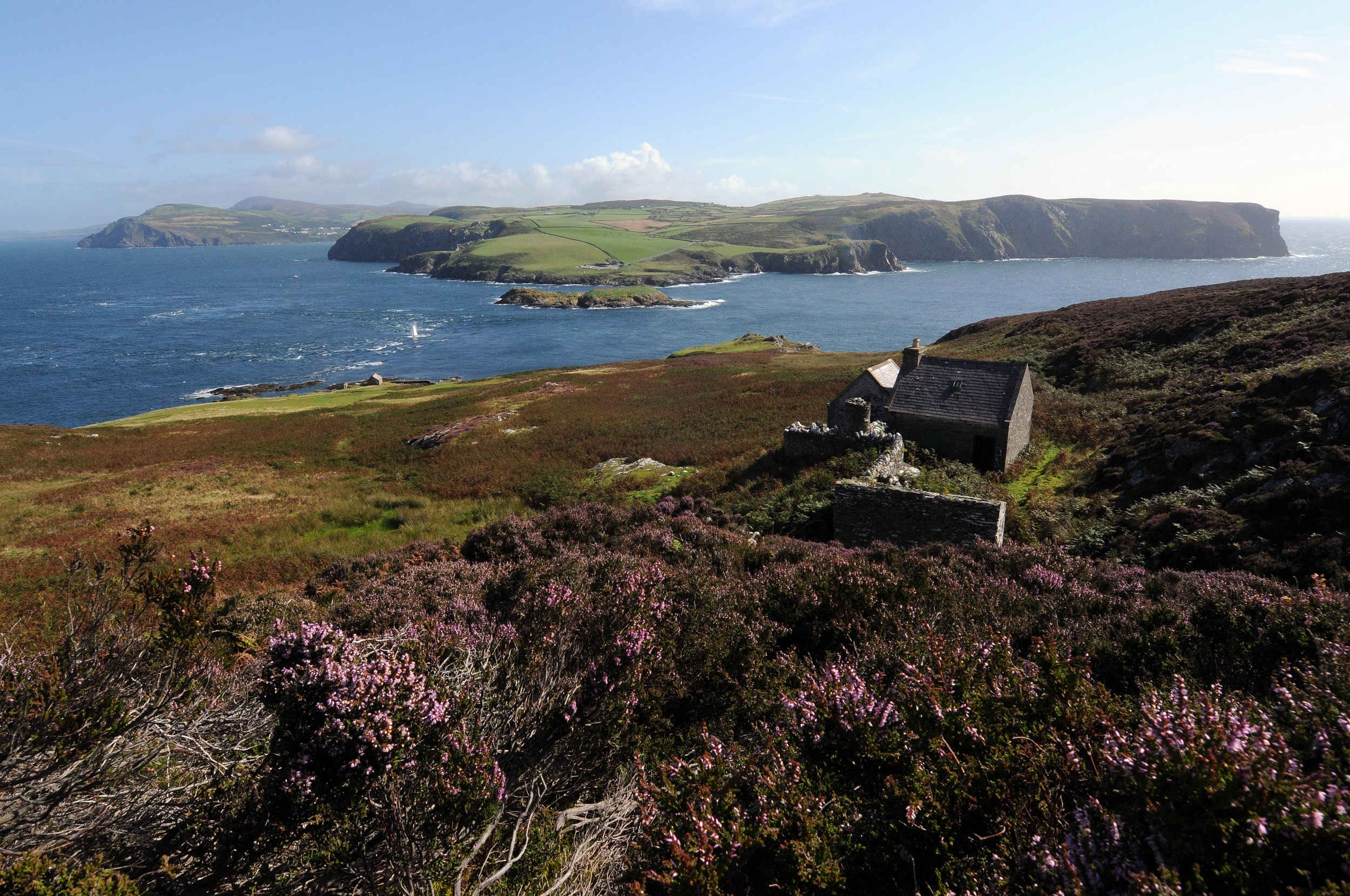 The derelict cottage known as Jane's house on the Calf of Man, looking across the Sound