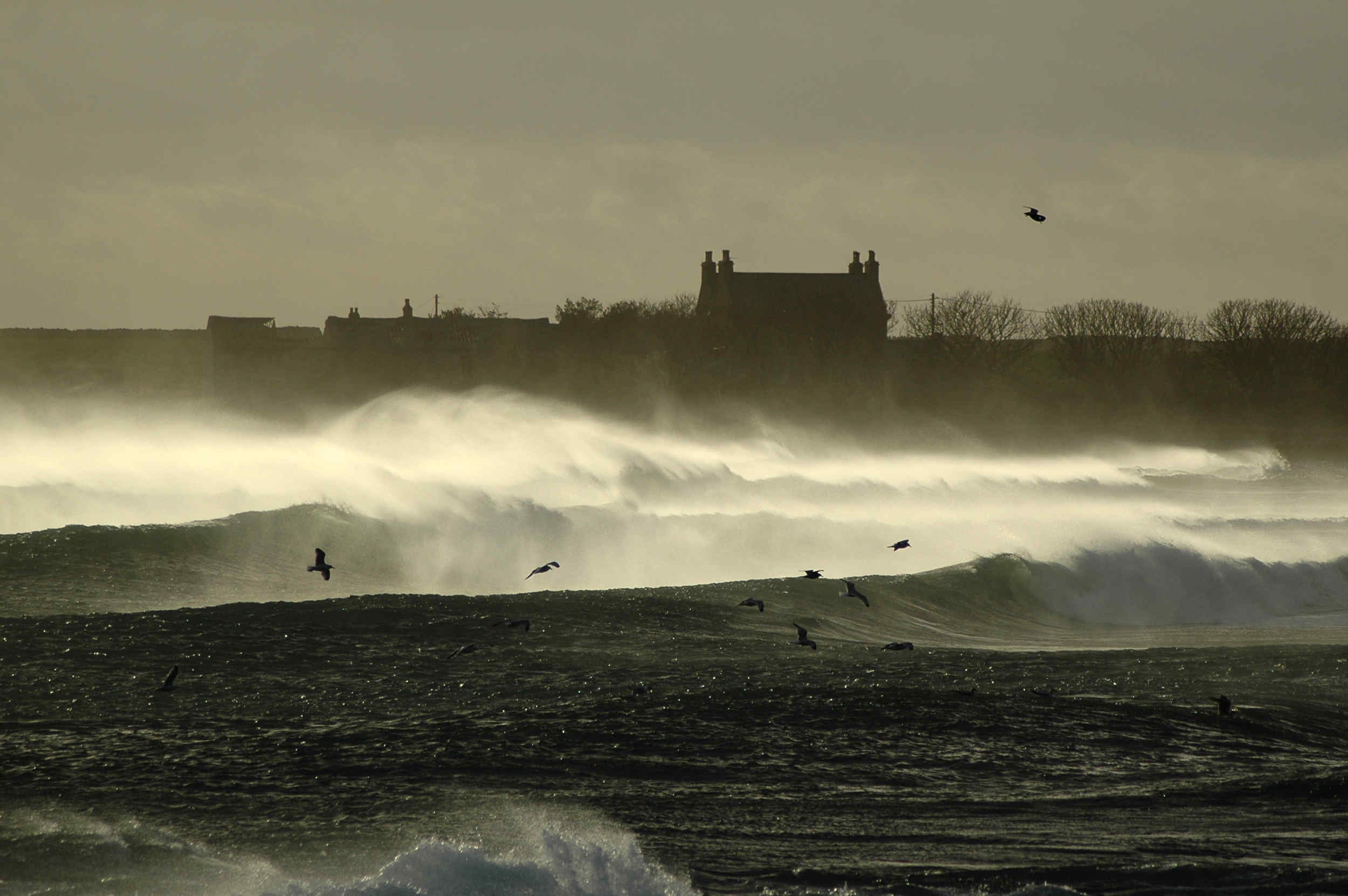 An offshore wind whips the tops off the breaking waves as a winter storm batters the coast at Scarlett.