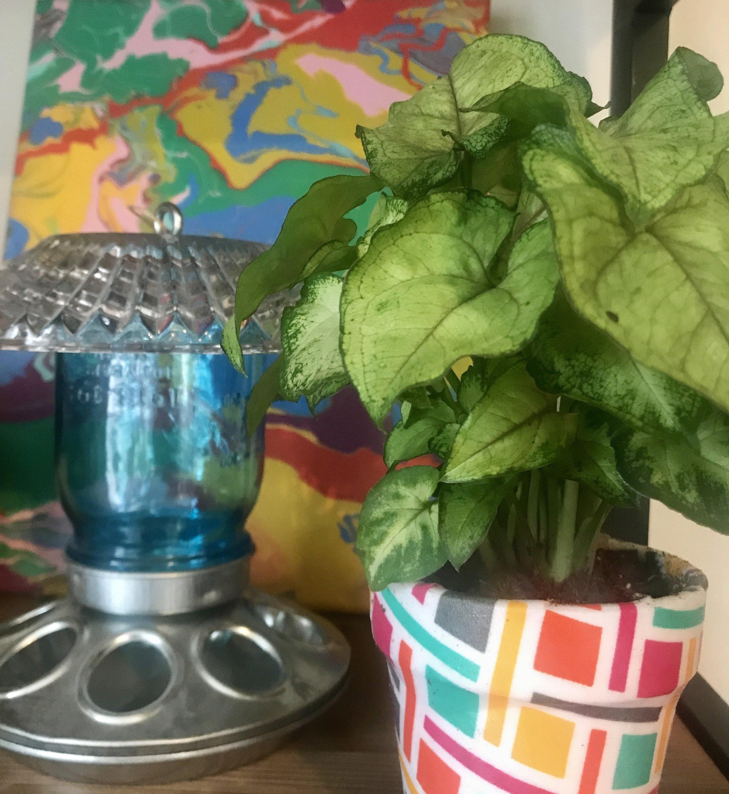 flower pot bird feeder.jpg