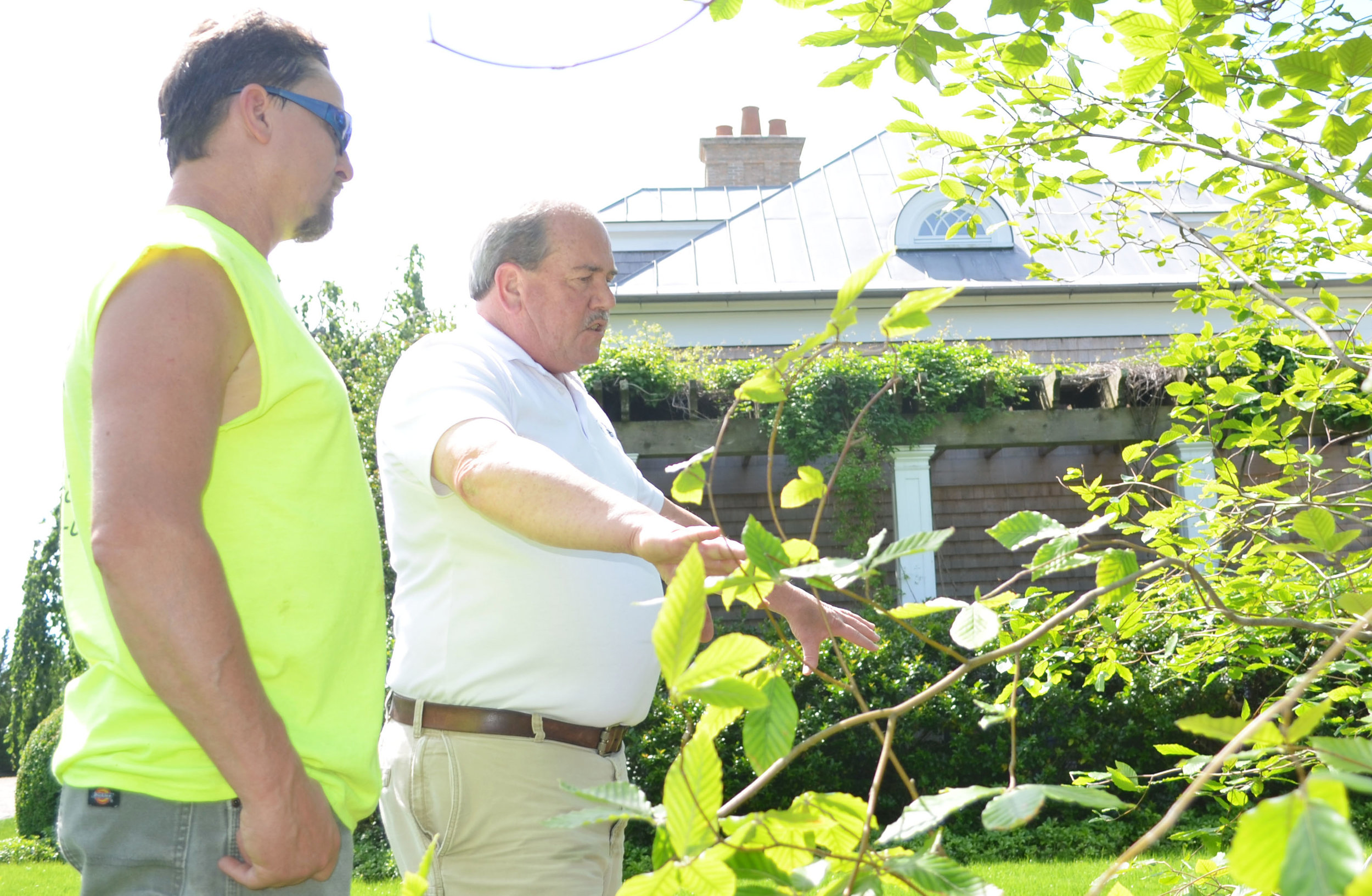 Bob Horan working closely with pruning crew.jpg