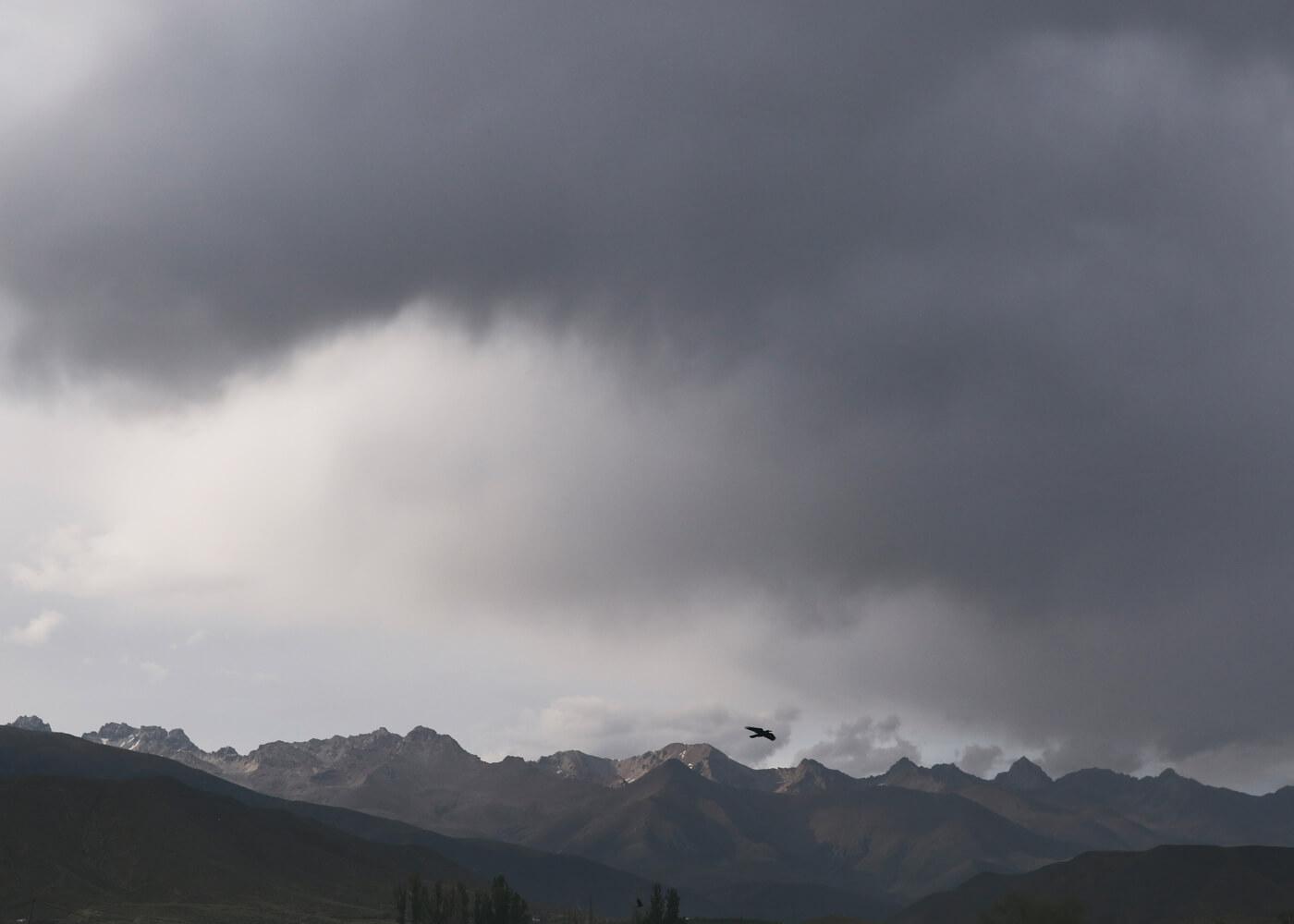 olivia-harris-kyrgyz-04.jpg