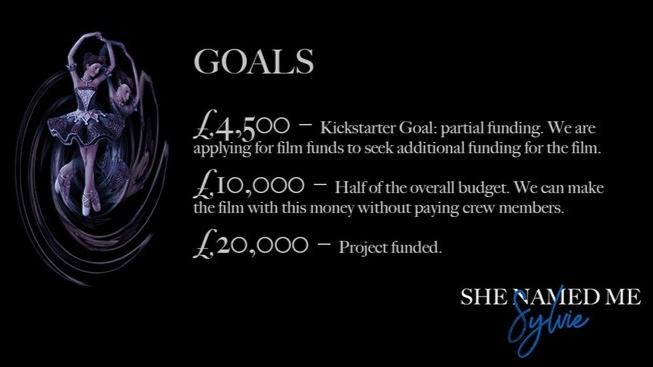 Visit their Kickstarter Campaign    here