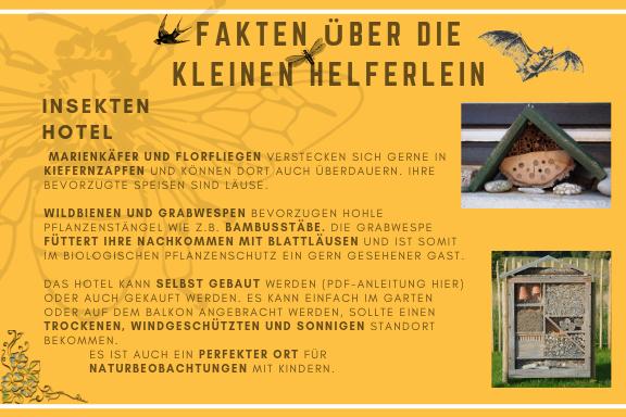 Insektenhotel_Beschreibung.png