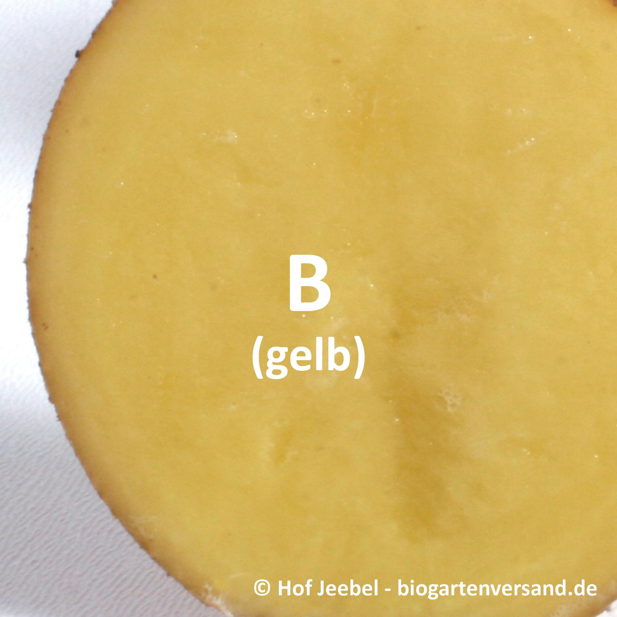 Fleisch_gelb.jpg