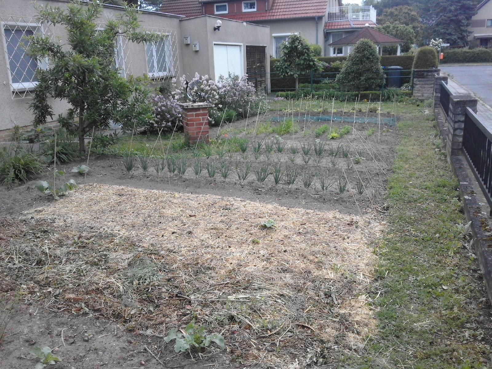 Dr. T's Garten, Gemüseackerdemie Methode