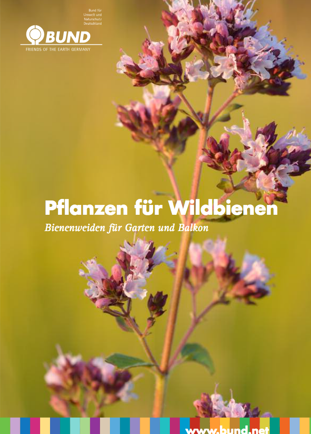 TitelPflanzen für Wildbienen - 150311_bund_aktion_wildbienen_pflanzen_fuer_wildbienen_faltblatt pdf.png