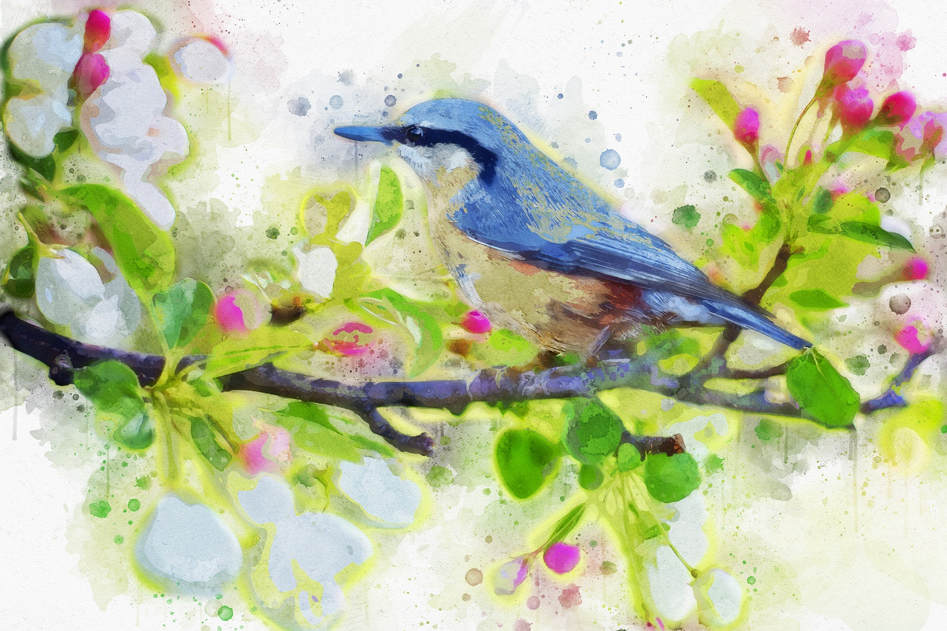 VogelBild.jpg