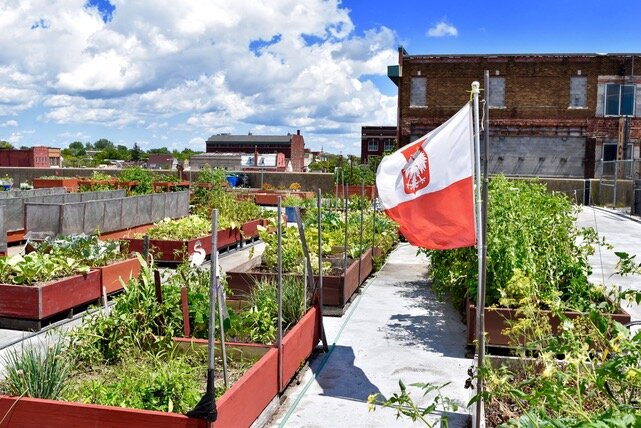 Vibrant Buffalo Beautification Grant Applications Extended To April 15 Gardens Buffalo Niagara