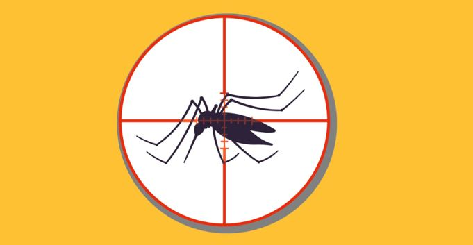 malaria target 2.JPG