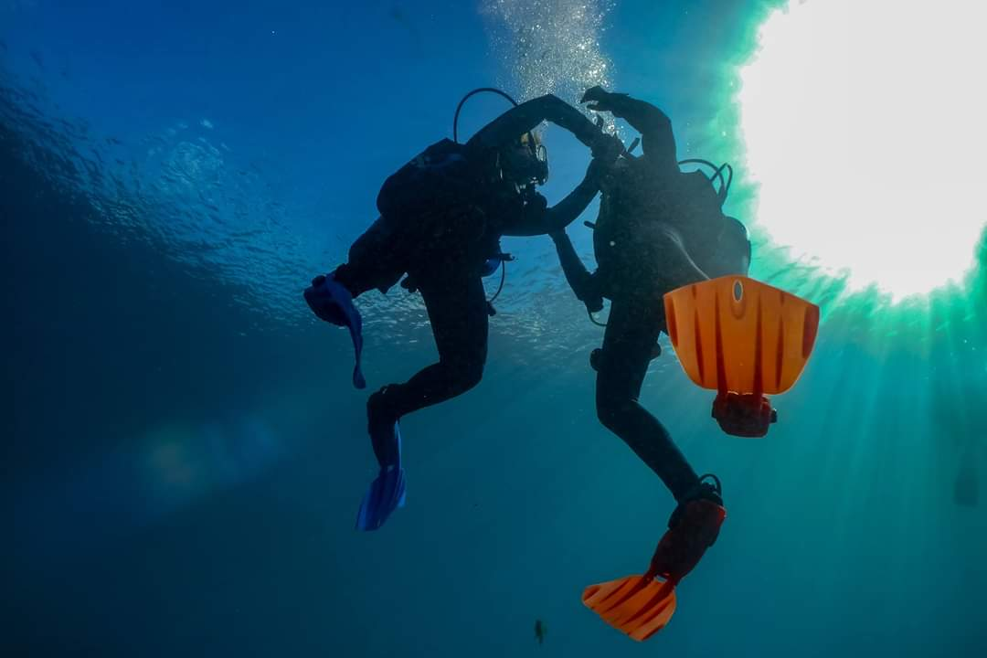 Universal Referral Program - $285.00If you have done your book work and confined open water dives somewhere else and need your checkout open water dives to complete your certification than we can help! Whether you have completed PADI, SSI, NAUI, or SDI book work and confined open water dives we can finish your certification. Requires two consecutive days. Fees include a dive pass, instructor fees, air fills, and all rental gear. PADI E-Learning is paid directly to PADI, it is not included in this price. PADI Crew Packs are available upon request, contact Dive Shop for pricing.