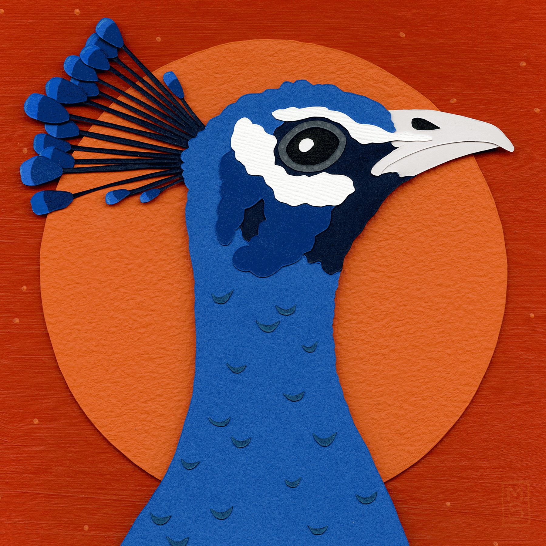 Peacock_sRGB.png
