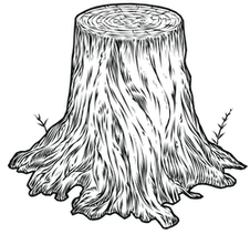 The Stump.png