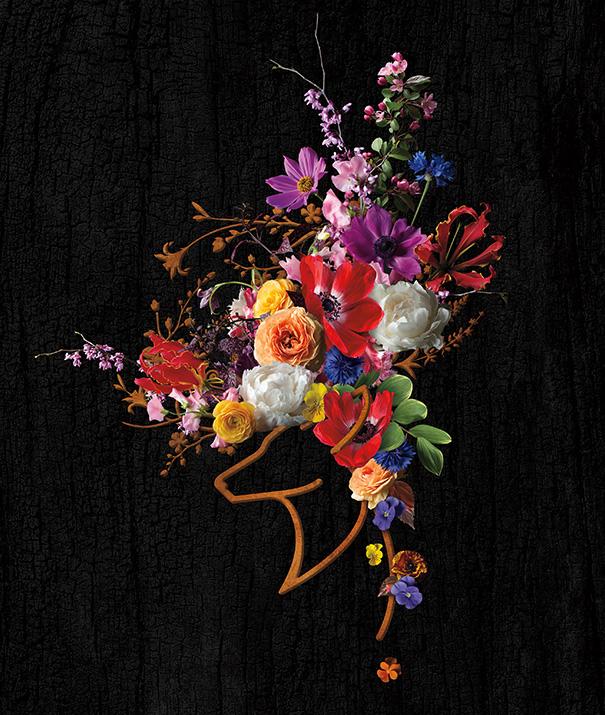 In Bloom  Brand Identity & Website Design