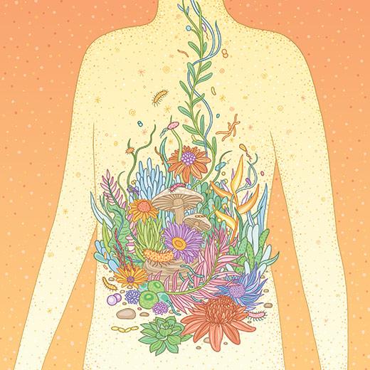 Illustration by Gaby   D'Allesandro