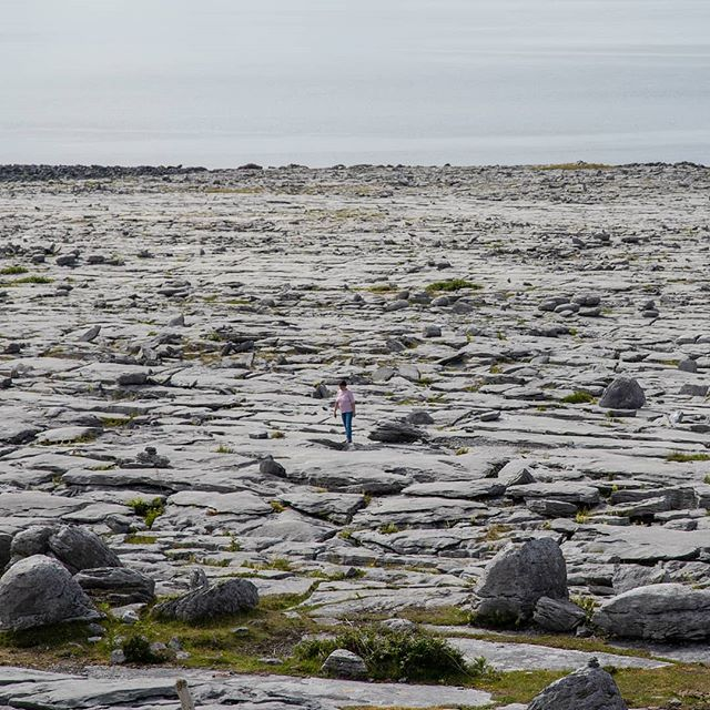 The Burren on  @thewildatlanticway is an amazing place to visit while travelling the west of Ireland. This type of rock format is only found within three regions in the world. #Galwaycoastcottages . . . .#galway #ireland #thisisgalway #iloveireland #irish_daily #agameoftones #instaireland #ig_ireland #icu_ireland #travel #landscape #inspireland #wildatlanticway #wonderful_places #discoverireland #planetearth #earthpix #beautifuldestinations #instagood #sunset #ocean #mywildatlanticway #summer #roamtheplanet #peoplescreatives #exklusive_shot