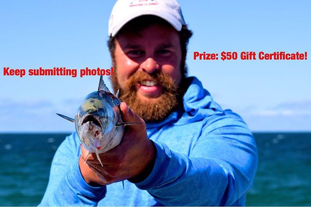 Just a reminder to everyone to keep submitting photos to the photo contest. The prize is a $50 Gift Certificate. Submit your photos to Nantucketfishpic@gmail.com for your chance to win! The winner will be announced in our newsletter. Sign up for our newsletter by heading to our website (fishingnantucket.com), scroll to the bottom and fill out the sign up form. #fishing #nantucket #islandlife #fish #boating #flyfishing @yozuri_lures #onthewater #beach #beachday