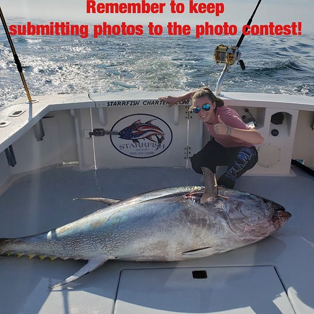 Remember to keep submitting photos! The prize is worth $50 and we stop takin photo submissions tonight at 11:59pm. Send your photos to nantucketfishpic@gmail.com.