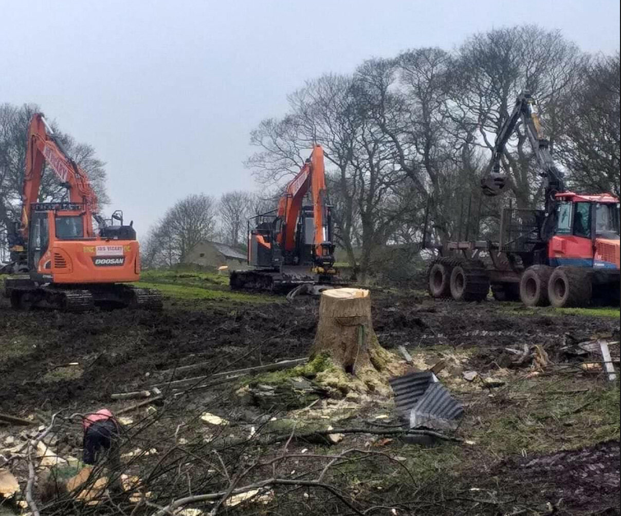 Stump Removal Specialists - We offer a range of tree services in Sheffield, but one of the more challenging ones is stump removal. Removing the stump comes as standard with our tree removal service. Please see below for our full range of services offered by our team.