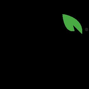 Bai_Logo-Transparent-Background-300x300.png