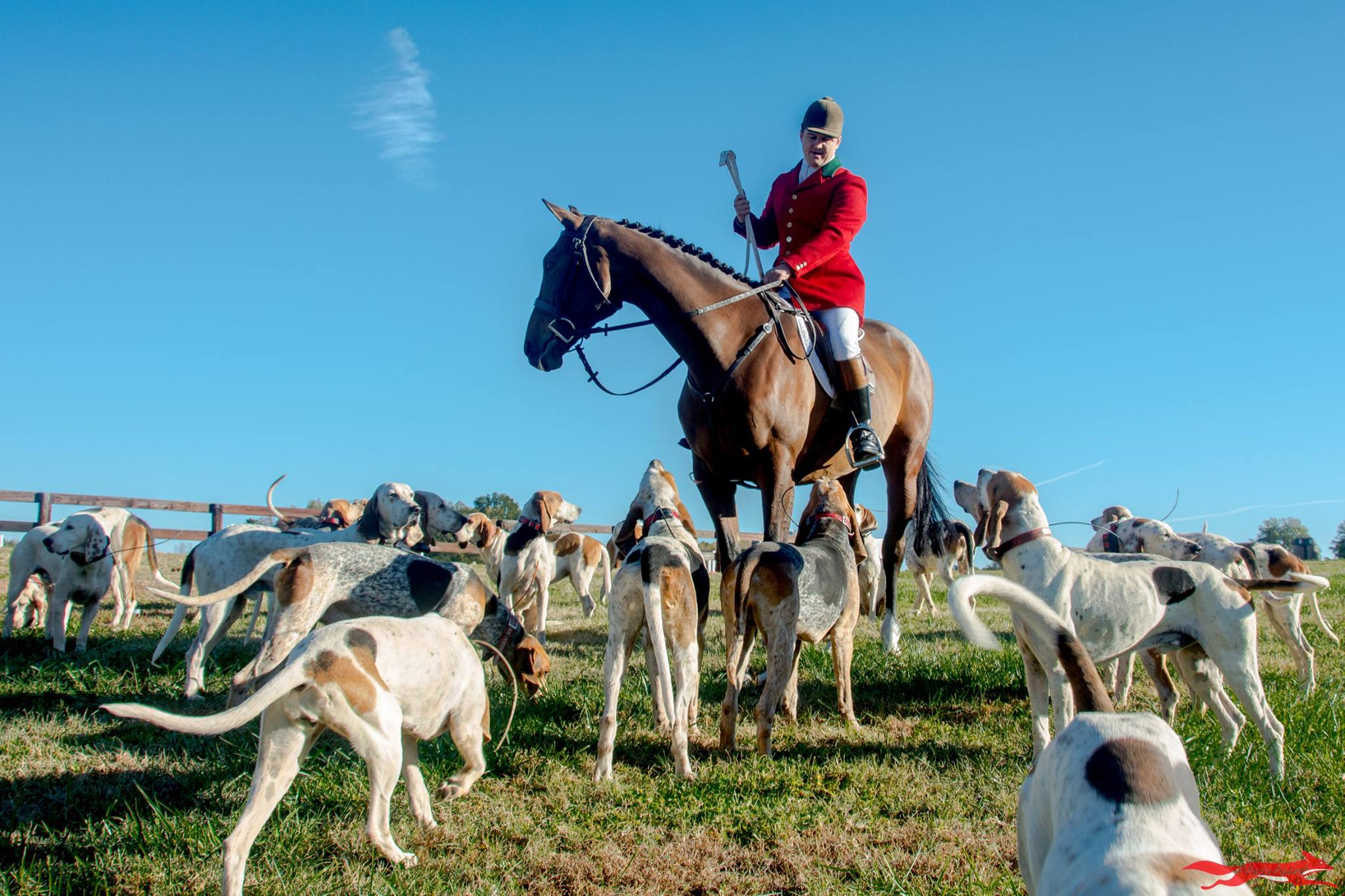 About - Find out more about hunting with our club and about the history of Red Mountain Hounds