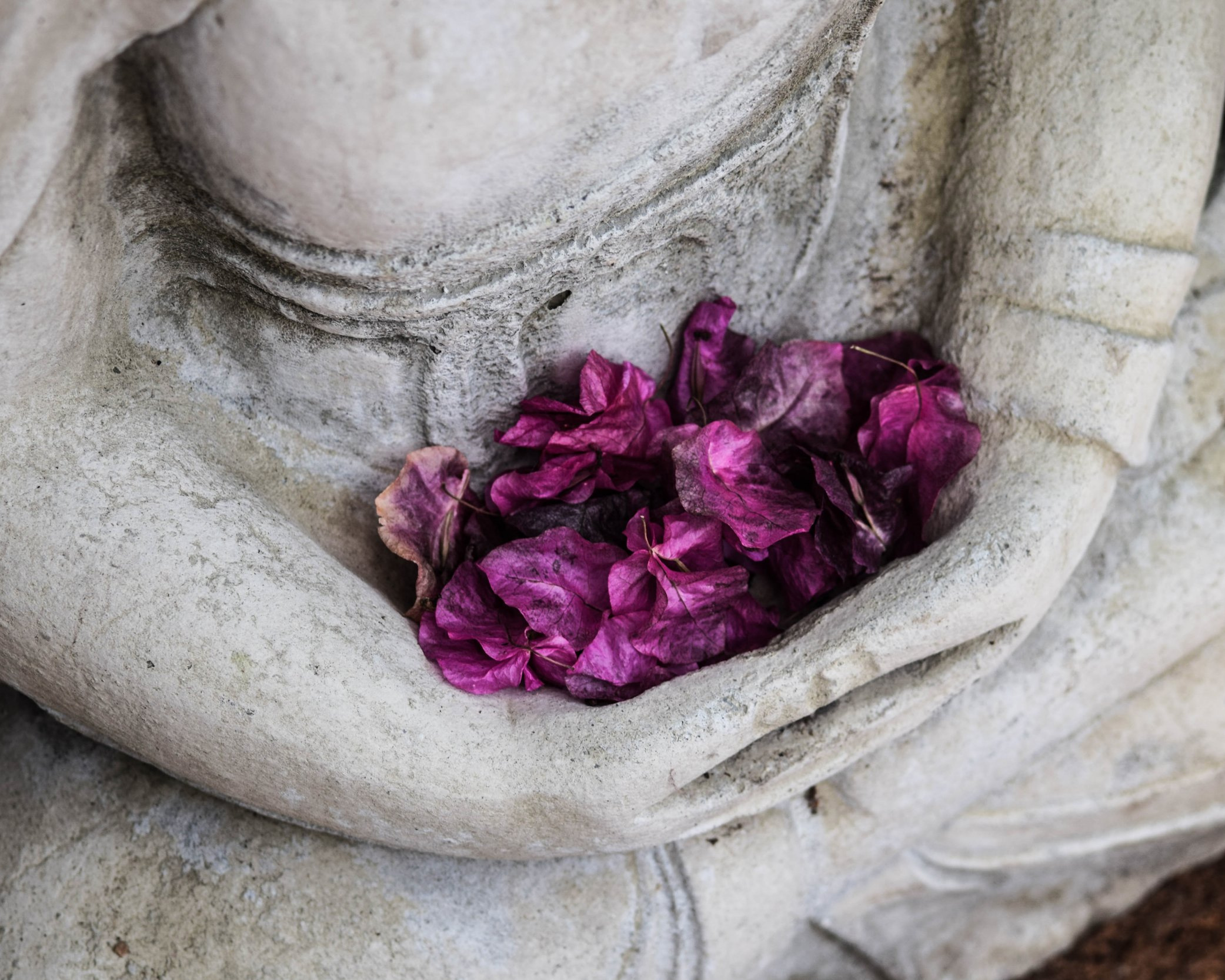 DECEMBER: BEAUTIFUL BODY RITUALS - During this month where you can often feel disconnected from the body, you'll learn four easy, inexpensive ways to reconnect to your